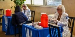 vna flu clinics